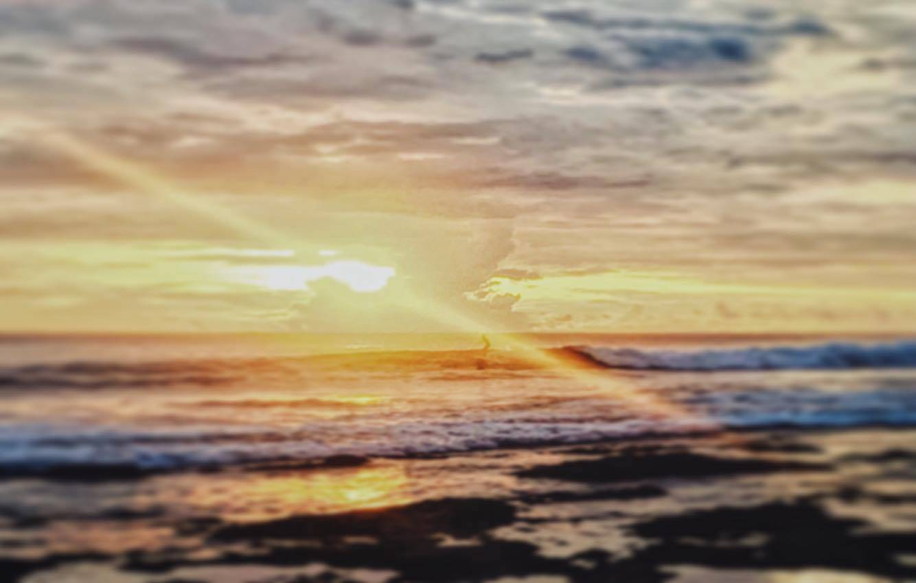 Mahi Mahi Surf Resort