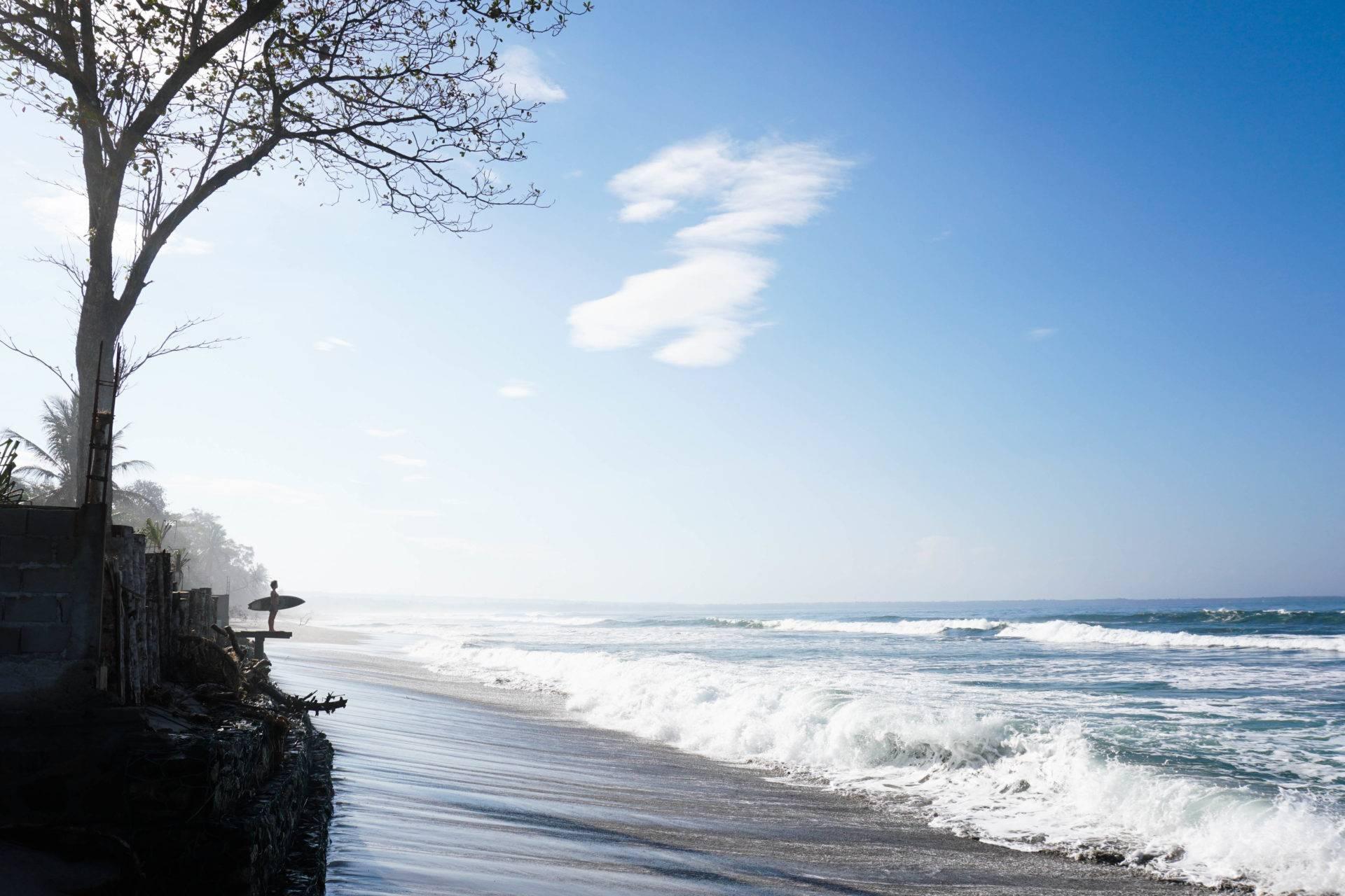 Surfing Krui