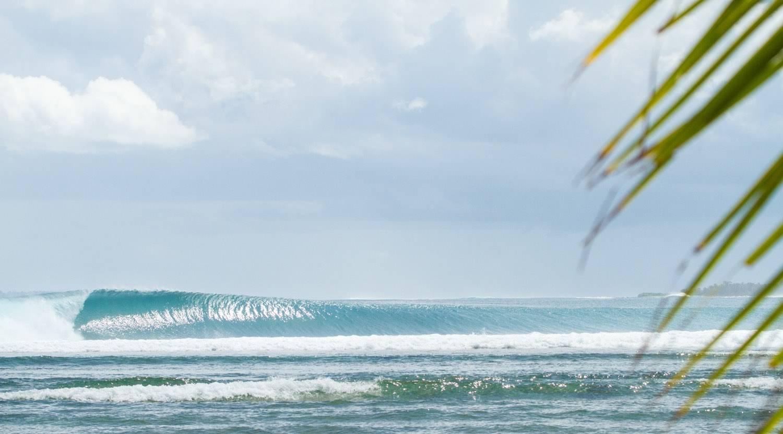Mentawai Surf or Boat